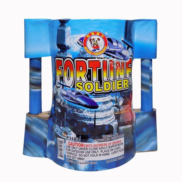 Fortune Soldier
